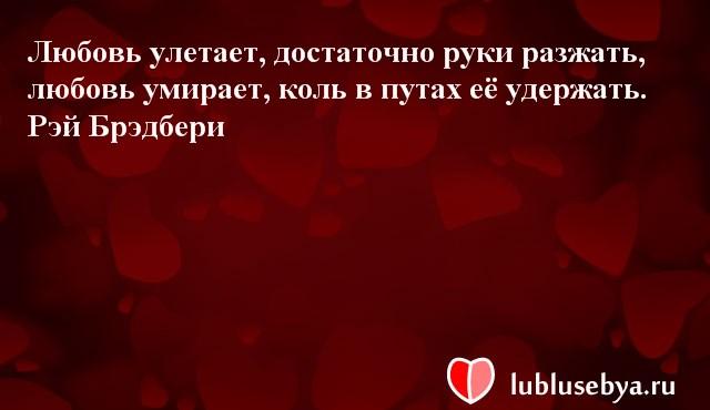 Цитаты. Мысли великих людей в картинках. Подборка lublusebya-47371222042019 картинка 17