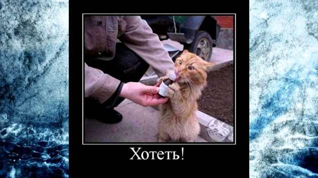 Нежный юмор для девушек и женщин. Подборка картинок и фото lublusebya-lublusebya-33400510052019-16 картинка lublusebya-33400510052019-16