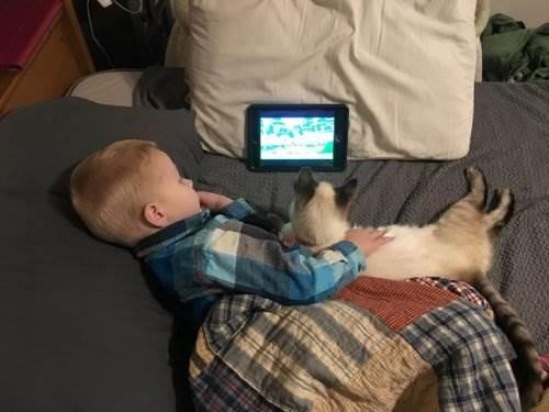 Всегда приятно, когда рядом есть друг! 15 милейших фото, доказывающих, что дети не могут жить без домашних животных