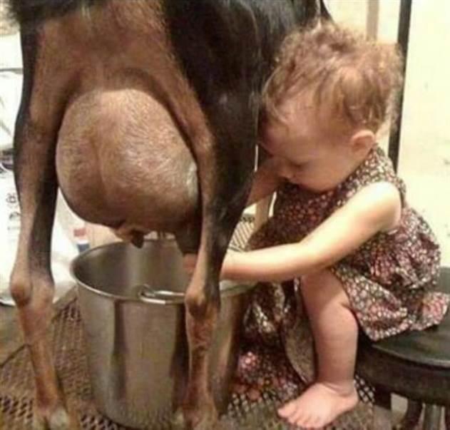 В гостях у бабушки: 20 самых смешных фото про малышей в деревне